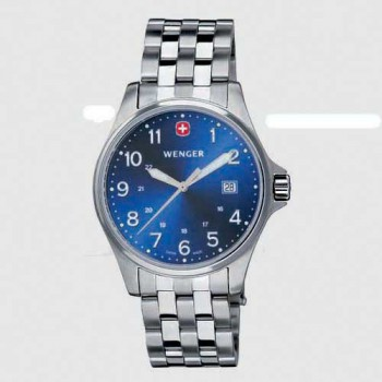 Мужские часы Wenger Watch TERRAGRAPH W72788