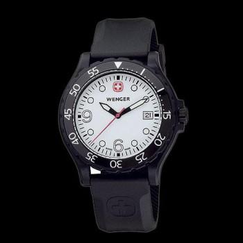 Мужские часы Wenger Watch RANGER W70900w