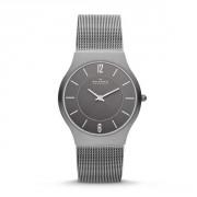 Мужские часы Skagen GRENEN Sk233lttm