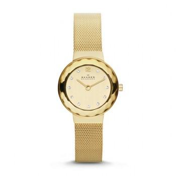 Женские часы Skagen LEONORA Sk456sgsg