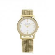 Женские часы Skagen WHITE LABEL Sk39lgg1